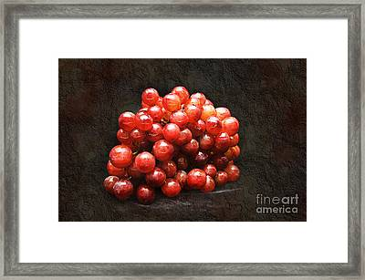 Red Grapes Framed Print by Andee Design