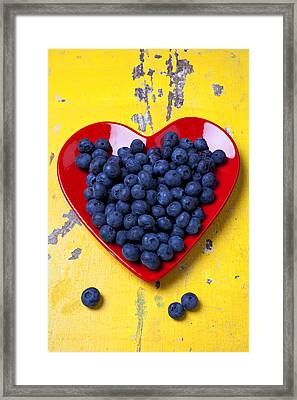 Red Heart Plate With Blueberries Framed Print by Garry Gay