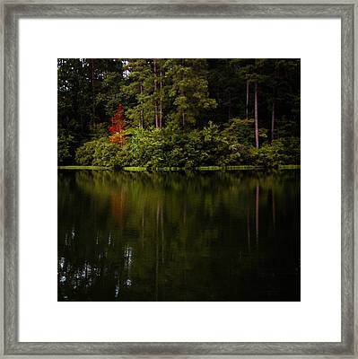 Red In Square Framed Print by Parker Cunningham
