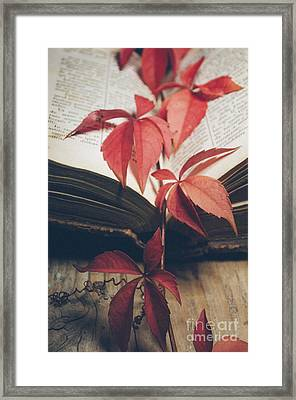 Red Ivy Framed Print by Jelena Jovanovic