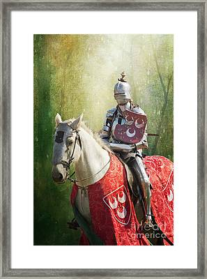 Red Knight Framed Print by Terri Waters