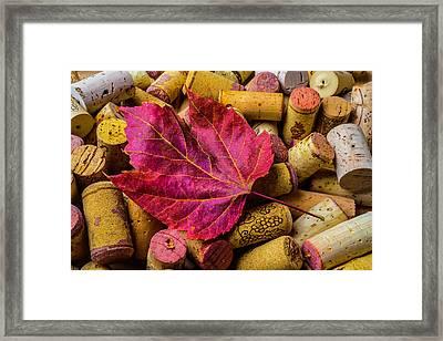 Red Leaf On Wine Corks Framed Print by Garry Gay