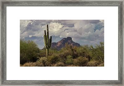 Red Mountain Arizona  Framed Print by Saija Lehtonen
