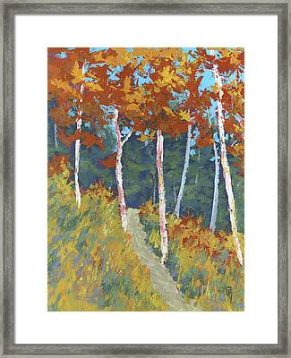 Red Mountain Aspens Framed Print by David King