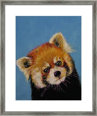 Red Panda Framed Print by Michael Creese