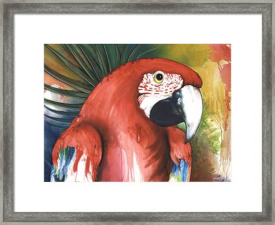Red Parrot Framed Print by Anthony Burks Sr