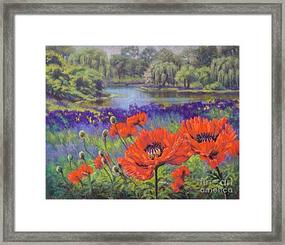 Red Poppies 1 Framed Print by Fiona Craig