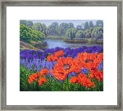 Red Poppies 2 Framed Print by Fiona Craig
