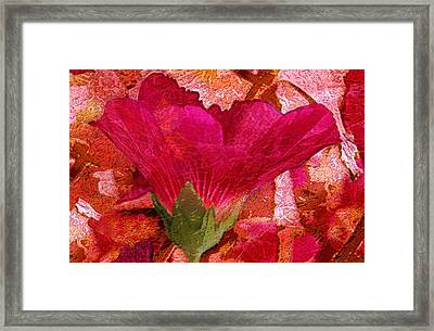 Red Queen Framed Print by Tom Romeo