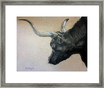 Red Rock Canyon Bull Framed Print by Derrick Higgins
