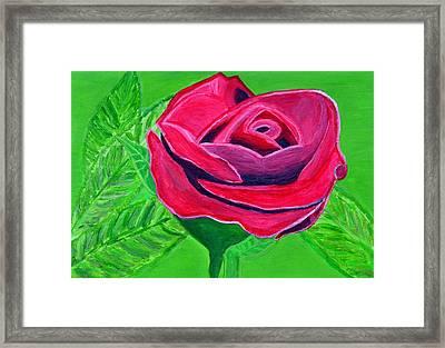 Red Rose 2 Framed Print by Magdalena Frohnsdorff