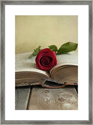 Red Rose On An Old Big Book Framed Print by Jaroslaw Blaminsky