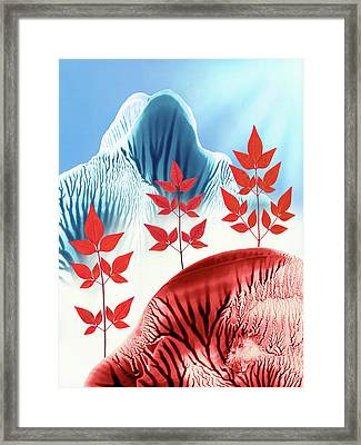 Red Rose Quarts And Serenity Blue Landscape 1 Framed Print by Amy Vangsgard