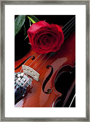 Red Rose With Violin Framed Print by Garry Gay