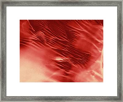 Red Rush Of Color Framed Print by Amy Vangsgard