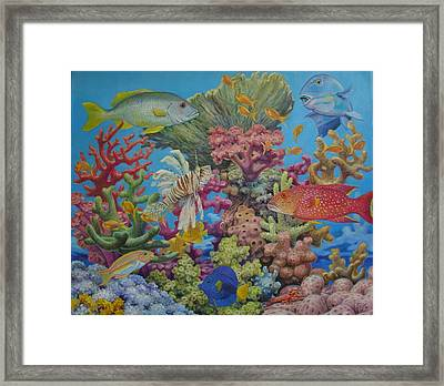 Red Sea Reef Framed Print by Henry David Potwin