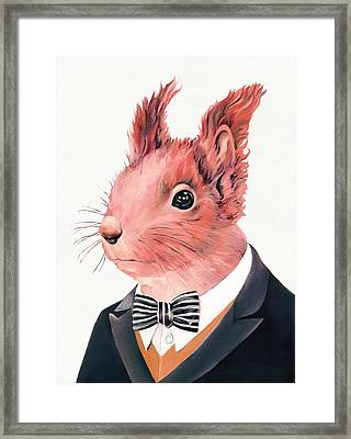 Red Squirrel Framed Print by Animal Crew