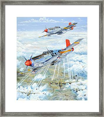 Red Tail 61 Framed Print by Charles Taylor