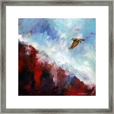 Red Tail Framed Print by David  Maynard