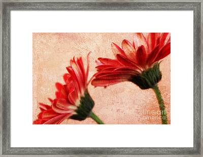 Red Texture 2 Framed Print by Clare Bevan