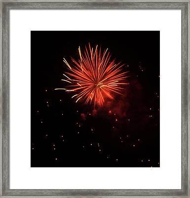 Redburst 2 Framed Print by Vijay Sharon Govender