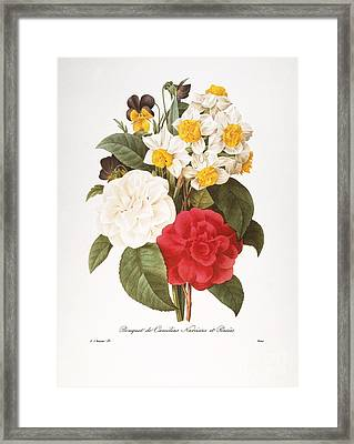 Redoute: Bouquet, 1833 Framed Print by Granger