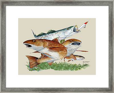 Reds And Trout Framed Print by Kevin Brant