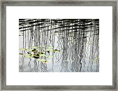 Reeds And Reflections Framed Print by Dave Fleetham - Printscapes