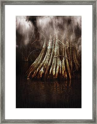 Reelfoot In Gentle Rain Framed Print by Julie Dant