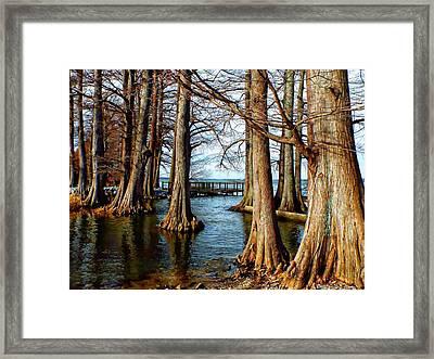 Reelfoot In Winter II Framed Print by Julie Dant