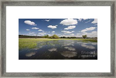Reflecting Clouds - Jim River Valley Framed Print by Patrick Ziegler