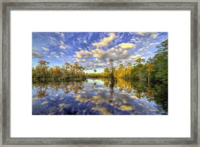 Reflecting On Florida Wetlands Framed Print by JC Findley