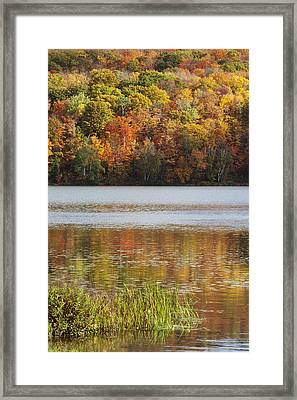 Reflection Of Autumn Colors In A Lake Framed Print by Susan Dykstra