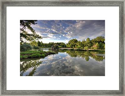 Reflection On The Poudre River Framed Print by Shane Linke