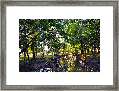 Reflections Framed Print by Brittany H