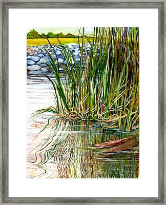 Reflections Framed Print by Elaine Hodges