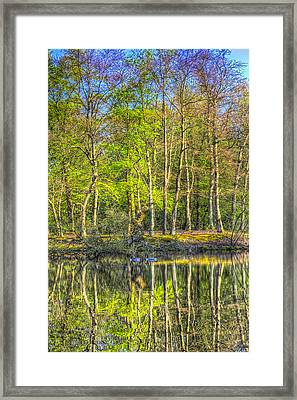 Reflections From The Pond Framed Print by David Pyatt