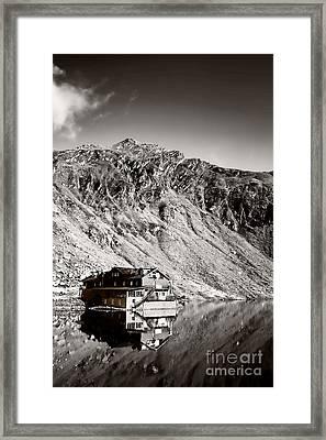 Reflections Framed Print by Gabriela Insuratelu