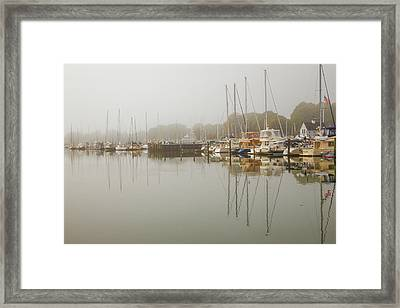 Reflections In The Fog Framed Print by Karol Livote
