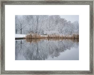 Reflections In Winter Framed Print by Miguel Winterpacht
