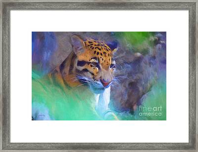Reflections Framed Print by Judy Kay