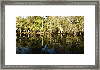 Reflections Of A Riverbank Framed Print by Felix Lai