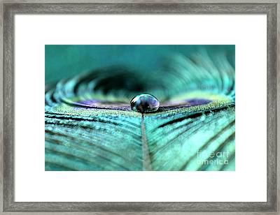 Reflections Of Clarity Framed Print by Krissy Katsimbras