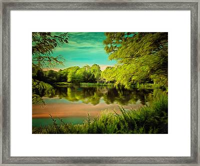Reflections On A Pond Framed Print by Anthony Caruso