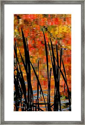 Reflections On Infinity Framed Print by Angela Davies
