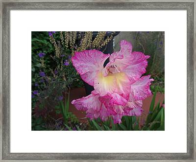 Refreshed By The Rain Framed Print by Martin Wall