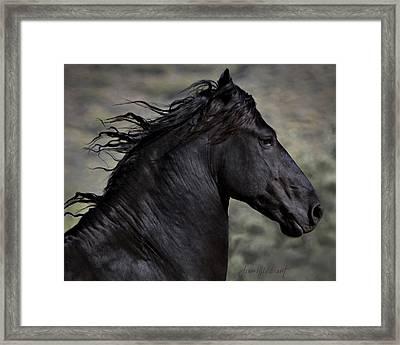 Regal Framed Print by Jean Hildebrant