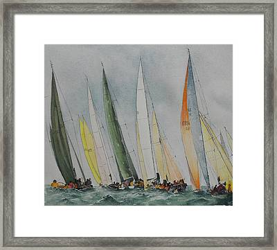 Regatta Framed Print by Carol McLagan