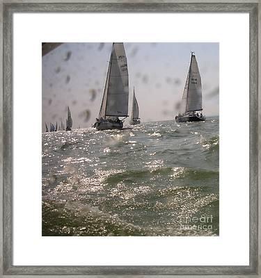 Regatta On The Balaton Lake Framed Print by Timea Mazug