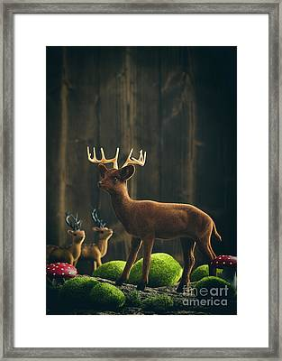 Reindeer Framed Print by Amanda Elwell